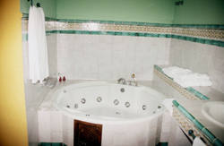 malaga-pet-friendly-apartments