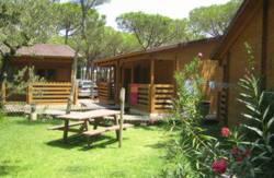 Campings En Andalucia Que Admiten Perros Almeria Cadiz Cordoba Granada Huelva Jaen Sevilla Malaga Viajar A Andalucia Con Mascotas