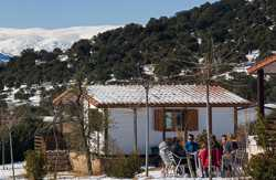 Camping Camping-Bungalows Monte Holiday admiten perros en Madrid