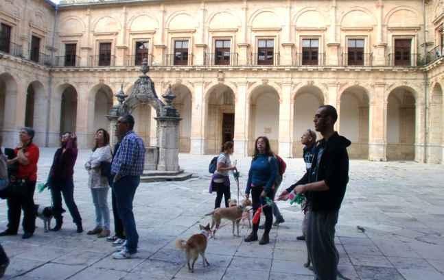 monasterio-ucles-con-mascota
