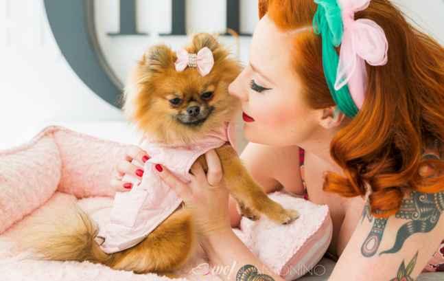 wof-moda-canina-glamour